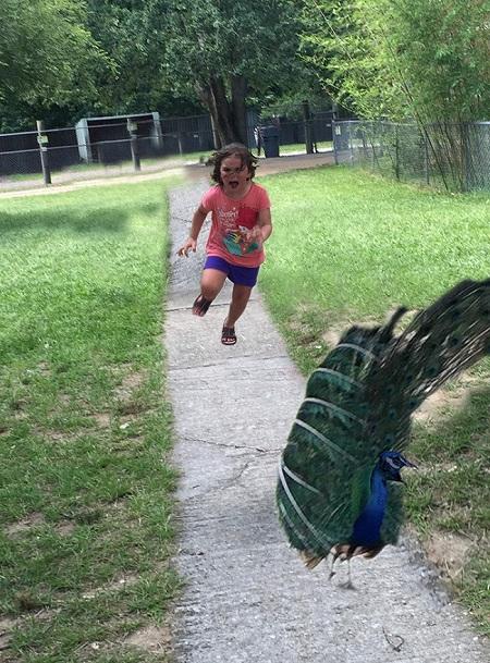 Từ một lần đi vườn thú, cô bé này đã trở thành nguồn cảm hứng chế ảnh cho cộng đồng mạng - Ảnh 8.