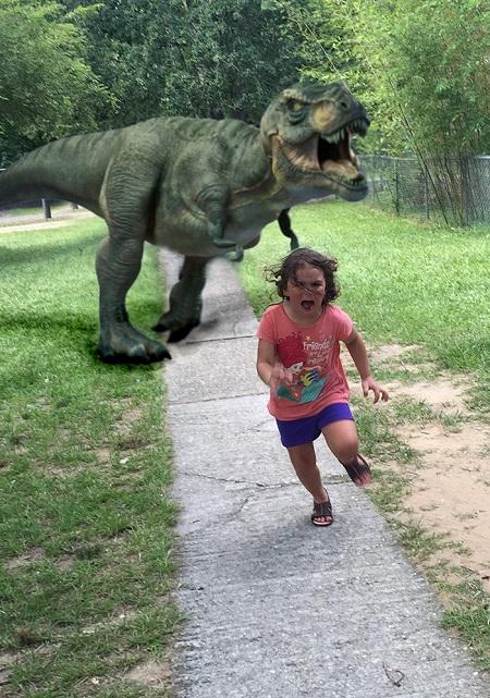 Từ một lần đi vườn thú, cô bé này đã trở thành nguồn cảm hứng chế ảnh cho cộng đồng mạng - Ảnh 10.