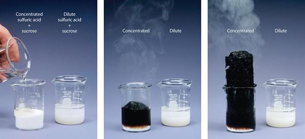 Bạn rất may mắn khi chưa gặp phải 5 loại hóa chất kinh khủng khiếp này trong đời - Ảnh 11.