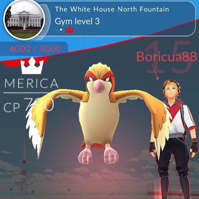Nhà Trắng cũng phải thất thủ trước người chơi Pokémon GO! - Ảnh 2.