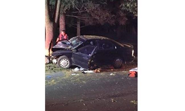 Mải tìm Pokémon, tài xế 28 tuổi đã phi thẳng ô tô vào gốc cây ven đường - Ảnh 1.