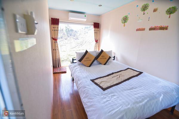 Lên Mộc Châu, ngủ nhà container đầy sắc màu giữa rừng mận trắng, cải vàng - Ảnh 3.