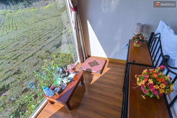 Lên Mộc Châu, ngủ nhà container đầy sắc màu giữa rừng mận trắng, cải vàng - Ảnh 5.