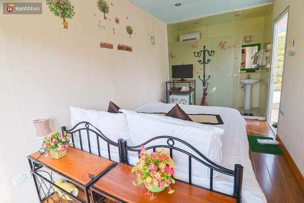 Lên Mộc Châu, ngủ nhà container đầy sắc màu giữa rừng mận trắng, cải vàng - Ảnh 6.