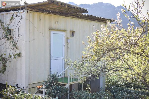 Lên Mộc Châu, ngủ nhà container đầy sắc màu giữa rừng mận trắng, cải vàng - Ảnh 9.