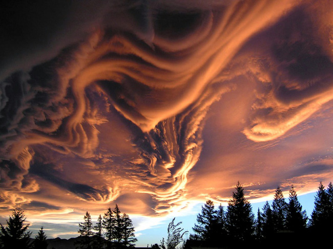 13 ảo ảnh thị giác tự nhiên khiến người ta cứ tưởng rằng đây là Photoshop - Ảnh 2.