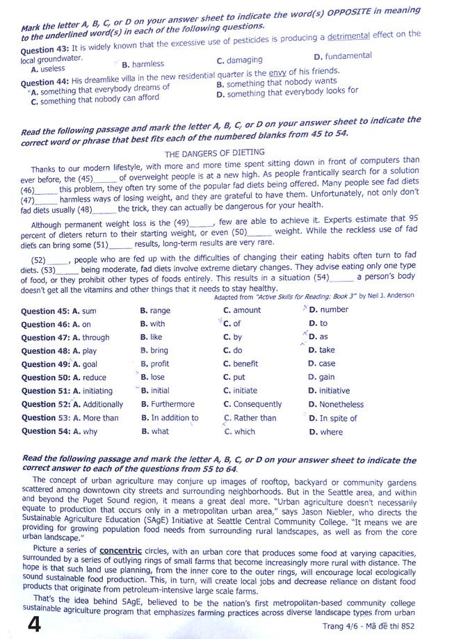 Cập nhật: Đáp án môn tiếng Anh kỳ thi THPT Quốc gia - Ảnh 6.