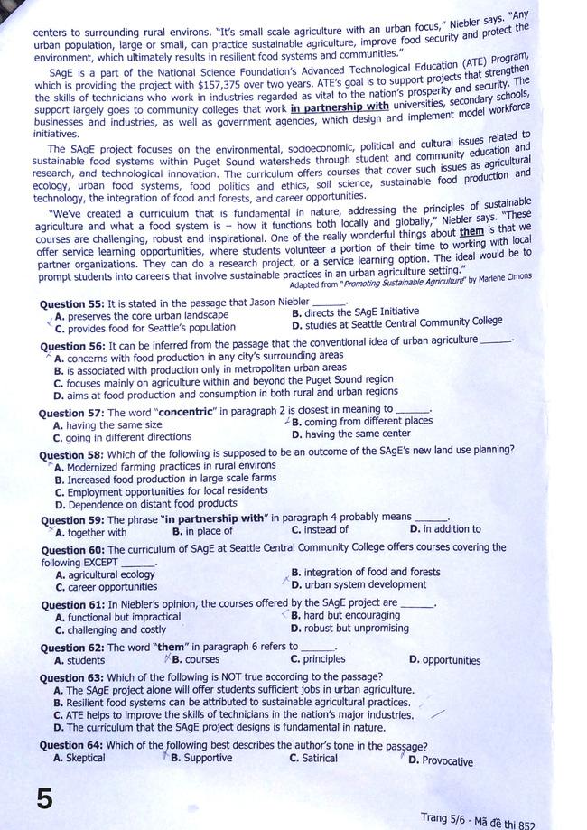 Cập nhật: Đáp án môn tiếng Anh kỳ thi THPT Quốc gia - Ảnh 7.