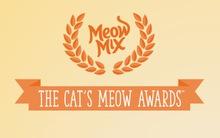 Quên Oscar đi và xin mời đến giải thưởng vinh danh loài mèo
